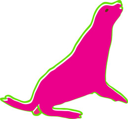 sea seal vector illustration