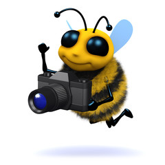 3d Photographer bee