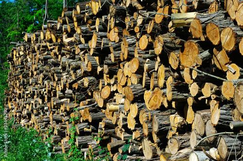 St re de bois stockfotos und lizenzfreie bilder auf bild 23445290 - Stere de bois ...
