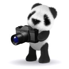 3d Panda holds a camera