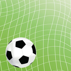 Picture of a soccer on the grass