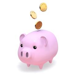 usual_piggybank_one_money