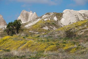 (118) cappadocia