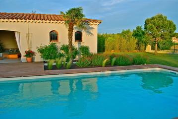 piscine palmier