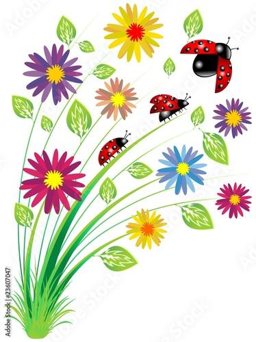 Coccinelle su fiori ladybirds on flowers vector immagini for Fiori stilizzati immagini