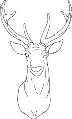 vector - Deer - hand draw , isolated on background