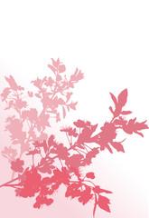 three pink cherry tree branches