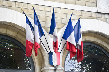 Mini French flags