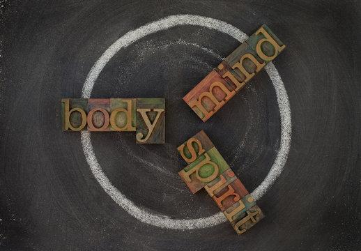 body, mind, soul - wellness cycle