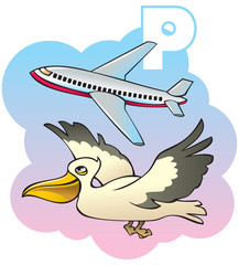 Children alphabet: letter P, pelican and plane, vector