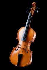 Violin,musical instrument
