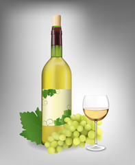 White wine set. Vector illustration. Contains mesh.