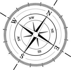 WhiteVector compas