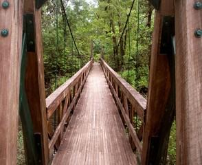 Blackwater River Bridge Florida Panhandle