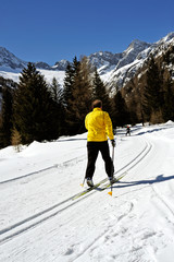 sciatore di fondo