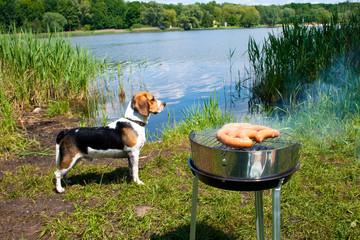 Fresh sausage preparing on grill at the lakeshore