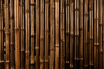 Bamboo Dark Background