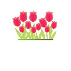 Branch of red tulip. vector illustration