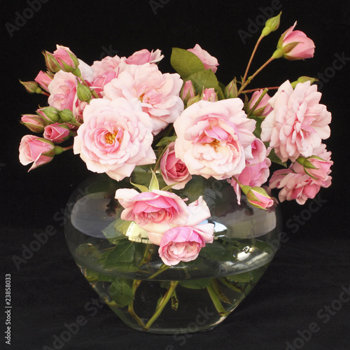 kleine hellrosa rosen in vase vor schwarzem hintergrund stockfotos und lizenzfreie bilder auf. Black Bedroom Furniture Sets. Home Design Ideas