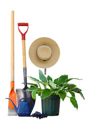 Garden Tools and Plant
