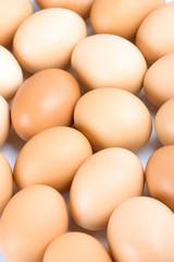 eggs background
