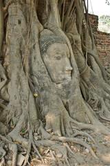 head in Ayutthaya