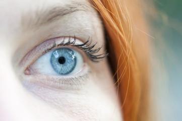 blaues Auge, Makro