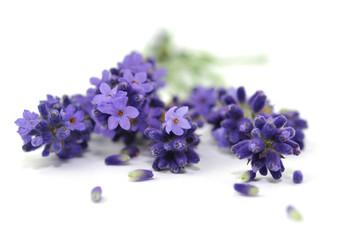 Natur, Aroma