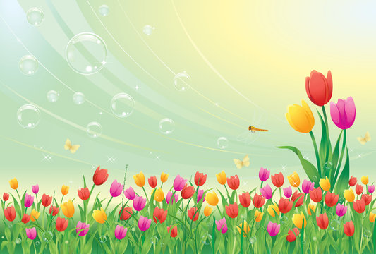 Floral meadow. Tulips