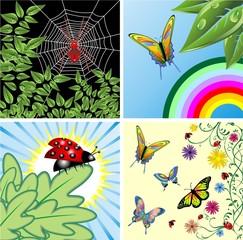 Natura e Insetti Sfondi-Nature and Insects Background-2