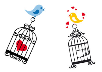 Deurstickers Vogels in kooien birds in love with birdcage