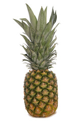 Pineapple cutout