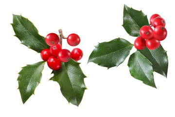 Holly Leaves Set
