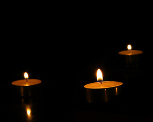 Tree candles