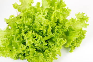 Salad leaves on a white