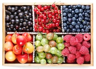 Clourful berries