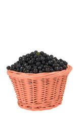 Basket with blueberry on a white