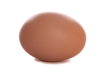 Single fresh egg cutout