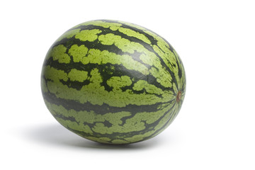 One whole single water melon