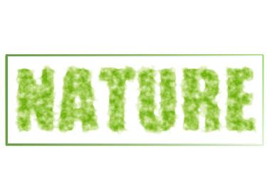 nature bannière d'aspect frais