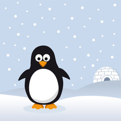 Pinguin im Schnee