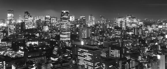 Türaufkleber Tokio Tokyo at night panorama, b&w