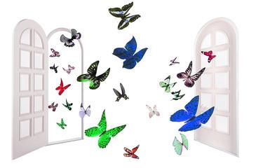 Colorful Butterflies flys through the open door to closed door
