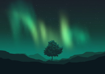 Aurora Borealis Over A Tree