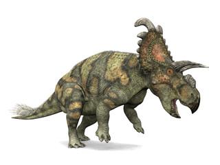 Albertaceratops