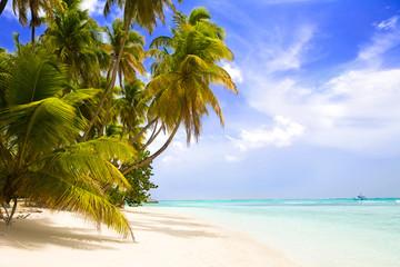 Foto op Plexiglas Caraïben paradise beach