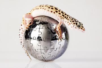 Gecko in globe