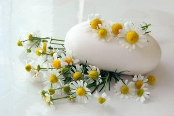 camomile soap