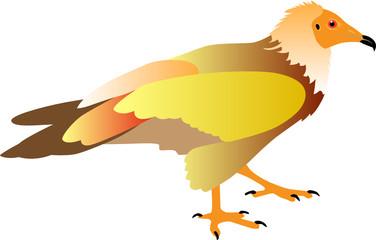 vulture vector illustration