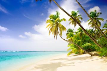 Printed roller blinds Caribbean deserted beach